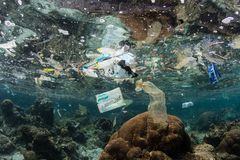 Free Plastic Bags And Trash In Tropical Pacific Ocean Stock Image - 139208541