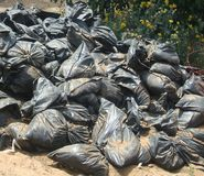 Plastic bags in a cultivated field. Stock Image