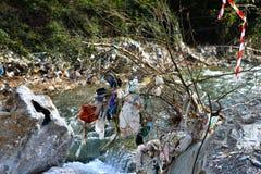 Plastic Garbage Polution in mountain stream Royalty Free Stock Image