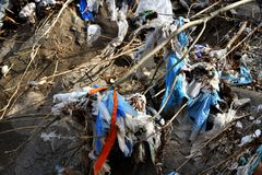 Plastic Garbage Polution in mountain stream Stock Images