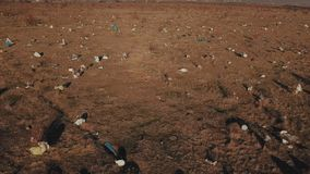 Plastic bags on the lawn. In bird`s-eye view stock footage