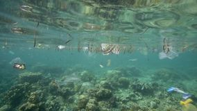 Plastic bags and other garbage floating underwater. Over fragile coral reef in Bunaken Island, Sulawesi stock video