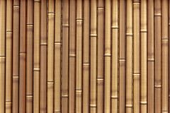 Plastic bamboo fence Royalty Free Stock Photo