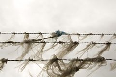 Plastic on barb wire stock images
