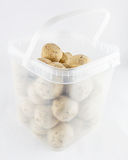 Plastic basket with suet balls Royalty Free Stock Images