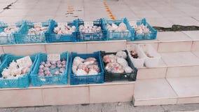 Plastic baskets filled with sea souvenirs of seashells on street. Flea market.