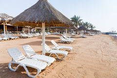 Plastic beach beds on coral bay in Aqaba Stock Images