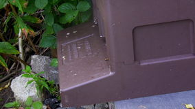 Plastic beehive stock footage