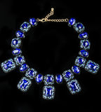 Plastic blauwe halsband royalty-vrije stock fotografie