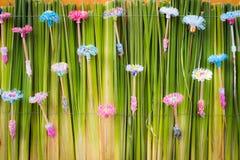 Plastic bloem Stock Foto