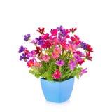 Plastic bloem voor decoratie stock afbeeldingen