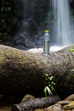 Plastic Bottle. Of Water placed on the log in Waterfall Area Royalty Free Stock Photos