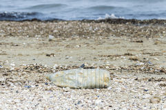 Plastic bottle on the beach Royalty Free Stock Image