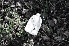 Plastic Bottle on the Grass Royalty Free Stock Image
