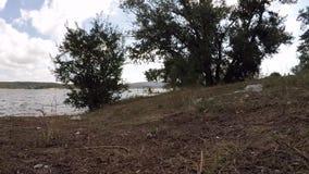 Plastic bottle littering the shore of Lake slow motion stock video
