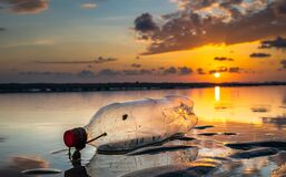 Free Plastic Bottle On The Beach Stock Photo - 174863040