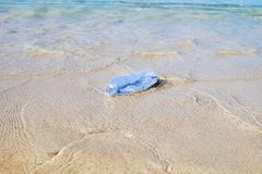Plastic bottle on sand beach. Pollution of the beach royalty free stock photo