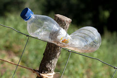 Plastic bottle to scare animals in orchard Stock Image