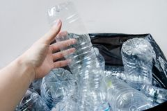 Plastic bottles in black garbage bags waiting to be taken to recycle. Royalty Free Stock Image
