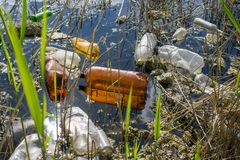 Plastic bottles in the lake. Environmental pollution. Ecological catastrophy. royalty free stock photo