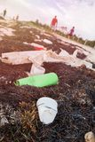Plastic Bottles Pollution and Seaweeds on Sandy Caribbean Beach royalty free stock image