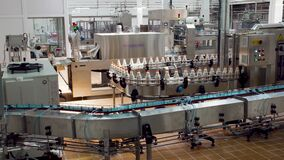 Plastic bottles. Workers make milk products on automated production equipment at milk factory.