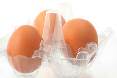 Plastic box with three brown eggs Royalty Free Stock Photography