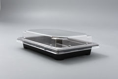 Plastic box with transparent cover for food Royalty Free Stock Photos