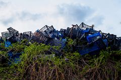 Plastic boxes among green climbing plants in a landfill. Garbage concept stock photo