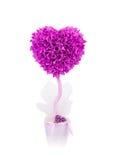 Plastic bush tree heart shape. Stock Photos