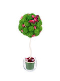Plastic bush tree. Royalty Free Stock Photos