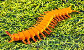 Plastic centipede Stock Photography