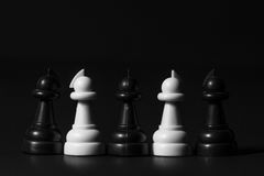 Plastic chess pieces Stock Photography