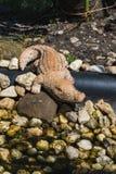 Plastic cijfer van een krokodil op de rotstuin stock foto's