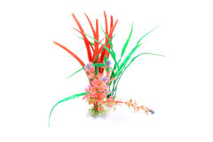Plastic colored plants Stock Photo