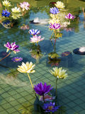 Plastic colorful decoration lotus in pond,Taipei Royalty Free Stock Photography