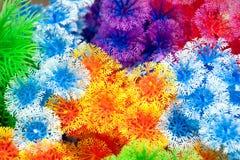 Plastic colorful decorative plants Stock Photo