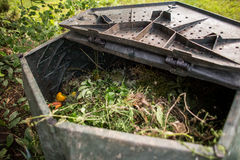 Plastic composter in a garden Stock Photography