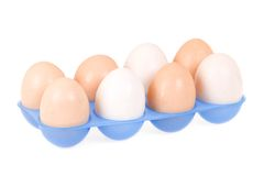 Plastic container and eggs Stock Images