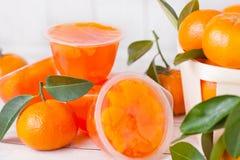 Plastic containers met mandarine tengerinegelei Royalty-vrije Stock Foto's
