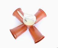 Plastic containers met yoghurt Stock Fotografie