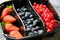 Plastic containersdoos van bessen, rode aalbessen, bosbessen, en aardbeien op de grijze achtergrond royalty-vrije stock foto