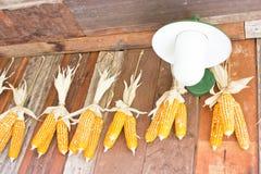 Plastic Corns Hang On Wooden Wall. Stock Photo