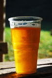 Plastic cup of beer Stock Photography
