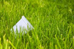 Plastic cup in the grass. The concept of environmental pollution, the rejection of plastic products, the use of packaging from. Natural materials royalty free stock photography