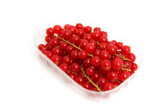 Plastic cup with red berries Stock Images