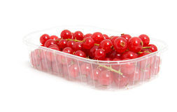 Plastic cup with red berries. Plastic cup with red berried over white background royalty free stock images