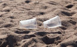 Plastic cup on the sand. In the park in nature royalty free stock photography