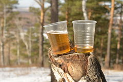 Plastic cups on tree stump Royalty Free Stock Images
