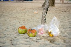 Plastic debris and coconut on the sand in Thailand. Plastic bags with glasses, fruit and food residues, two empty coconut and wet sand on the beach in Phuket stock images